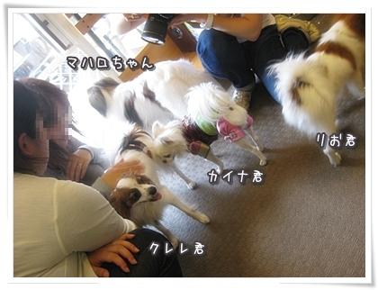 20100522-011.jpg
