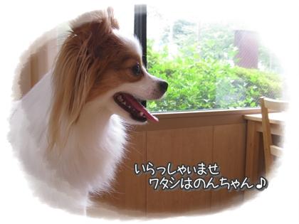 20100713-001.jpg