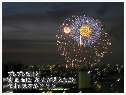20100816-194136-009.jpg