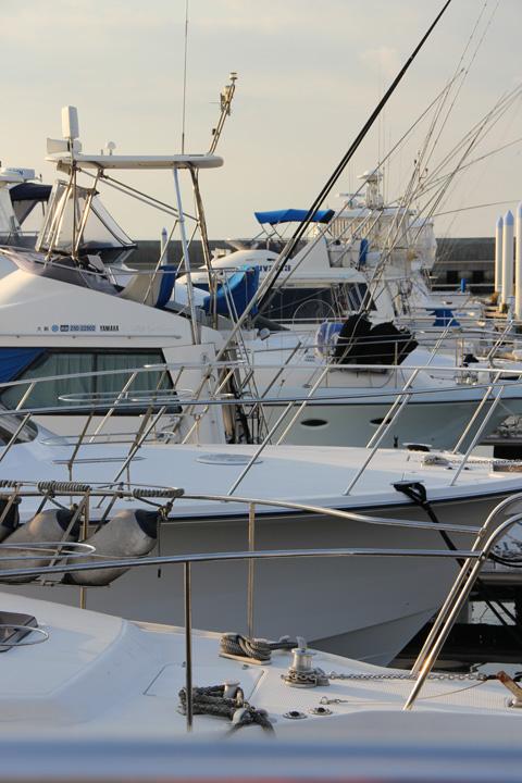 marina4.jpg