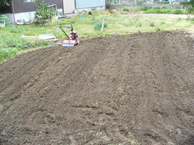 畑をすきました。