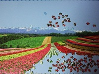 PanoramicFlowerGarden_010