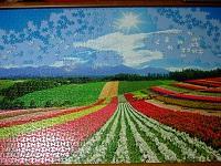 PanoramicFlowerGarden_022