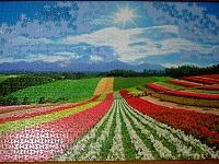 PanoramicFlowerGarden_024