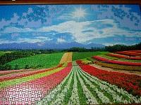 PanoramicFlowerGarden_025