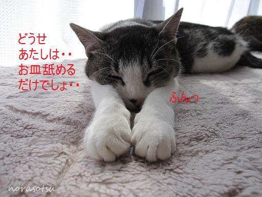 001_20100214201227.jpg