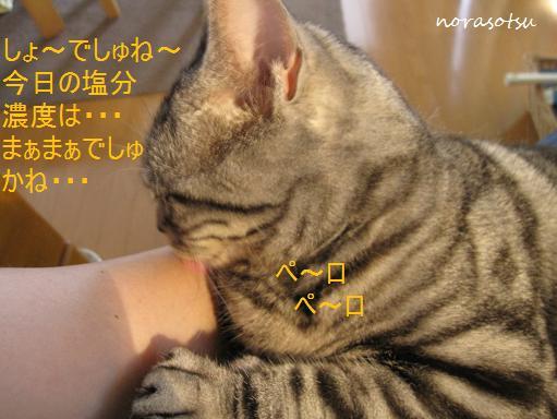 004_20100719100759.jpg