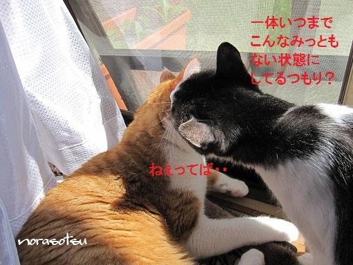007_20100926125410.jpg
