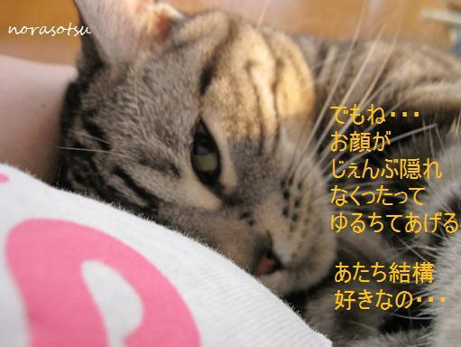009_20100719100759.jpg