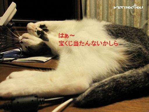 009_20101025202719.jpg