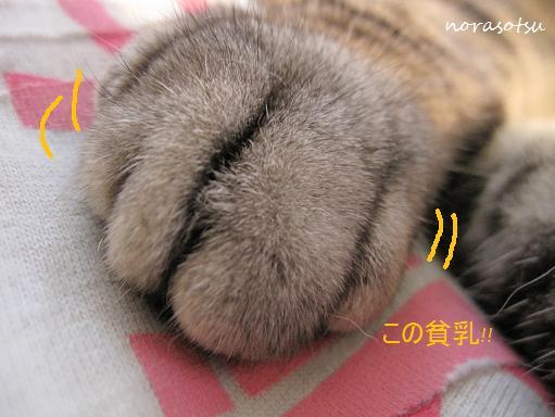010_20100719100758.jpg