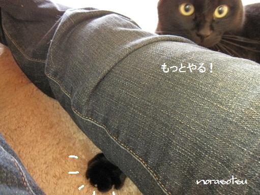 010_20101004174211.jpg