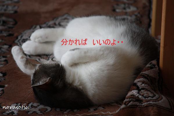 012_20100704213400.jpg