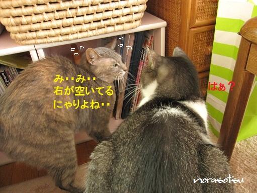 012_20100930104752.jpg