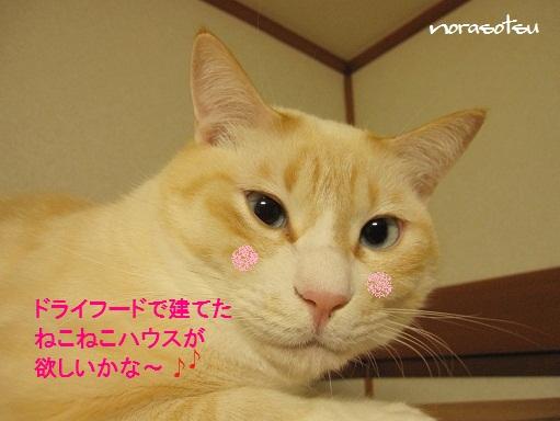 014_20101025202719.jpg
