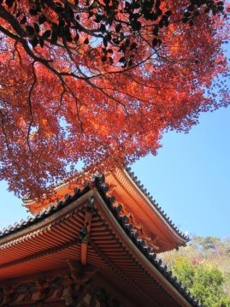 三滝寺IMG_6724 - コピー