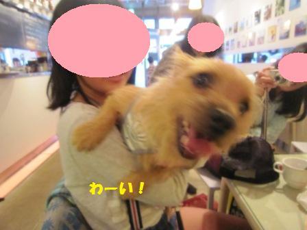 横浜IMG_6791 - コピー