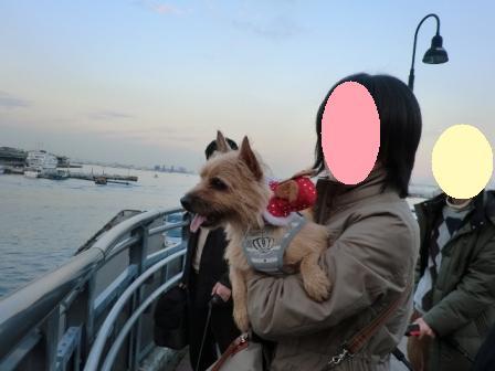 横浜2296_(640x480)