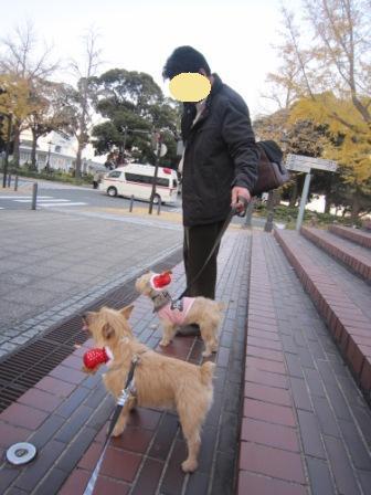横浜IMG_6795 - コピー