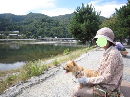 IMG_8905 平26・9嵐山