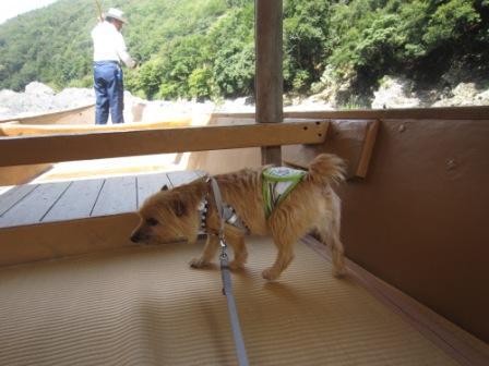 IMG_8927 - 平26・9嵐山