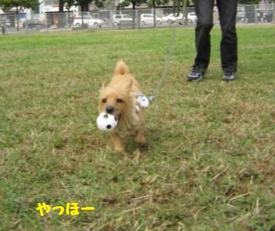 IMG_9049 広場でボール遊び14・10・12