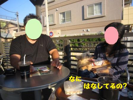 IMG_9084 チョコ湘南14・10