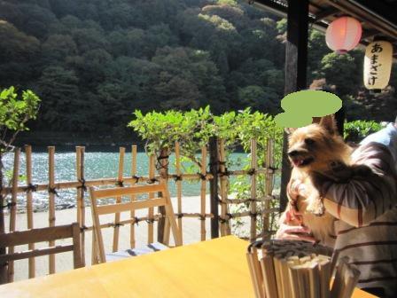 IMG_9316 嵐山14・11・3