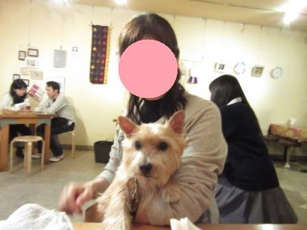 IMG_0069 大阪城公園14・11・29