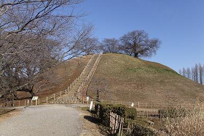 mosaku355.jpg