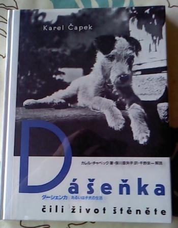 dasenka2_convert_20120910113409.jpg