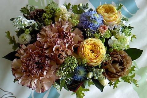flower_convert_20120327113856.jpg