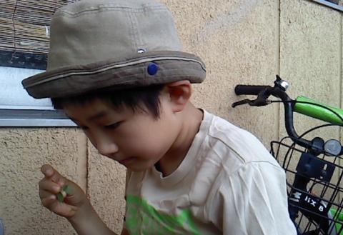 tomoro36_convert_20120718145009.jpg