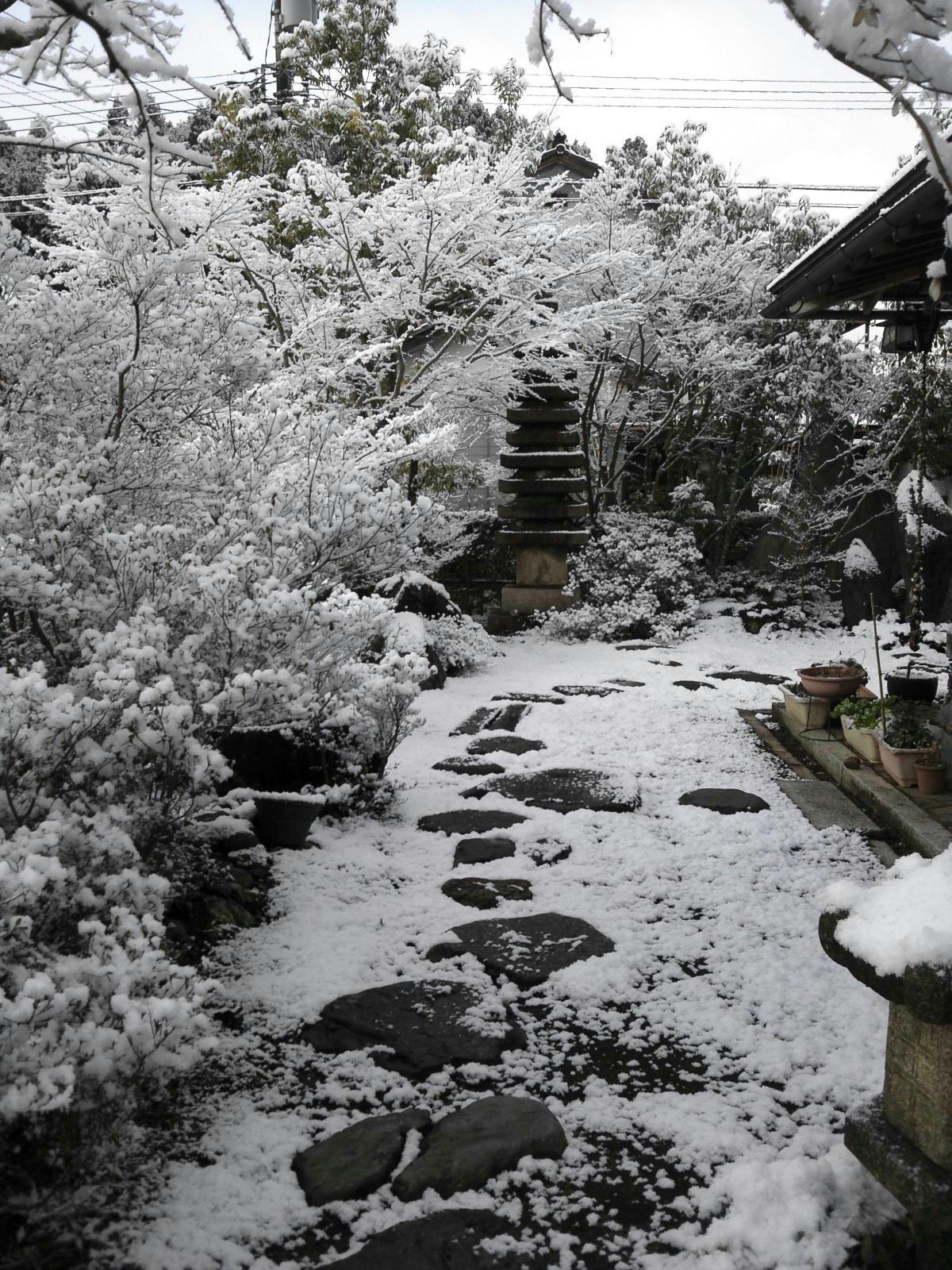雪朝3.21