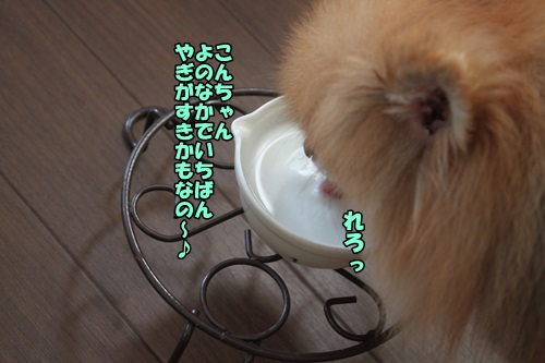 IMG_8221_2014091510104179f.jpg