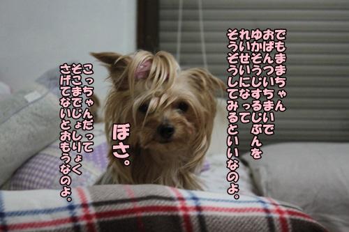 IMG_8227_20140913220154e21.jpg