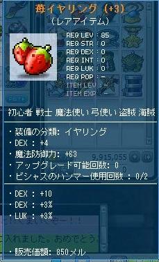 Maple110927_223201.jpg
