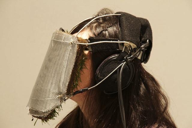 101118grass-mask.jpg