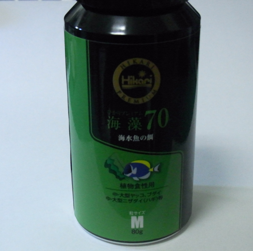海藻70_20111205