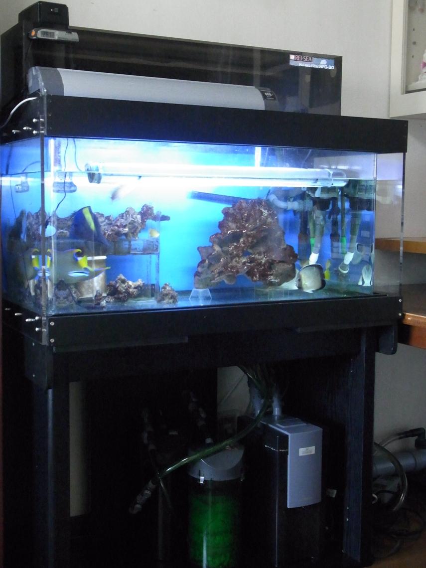 本水槽201200505