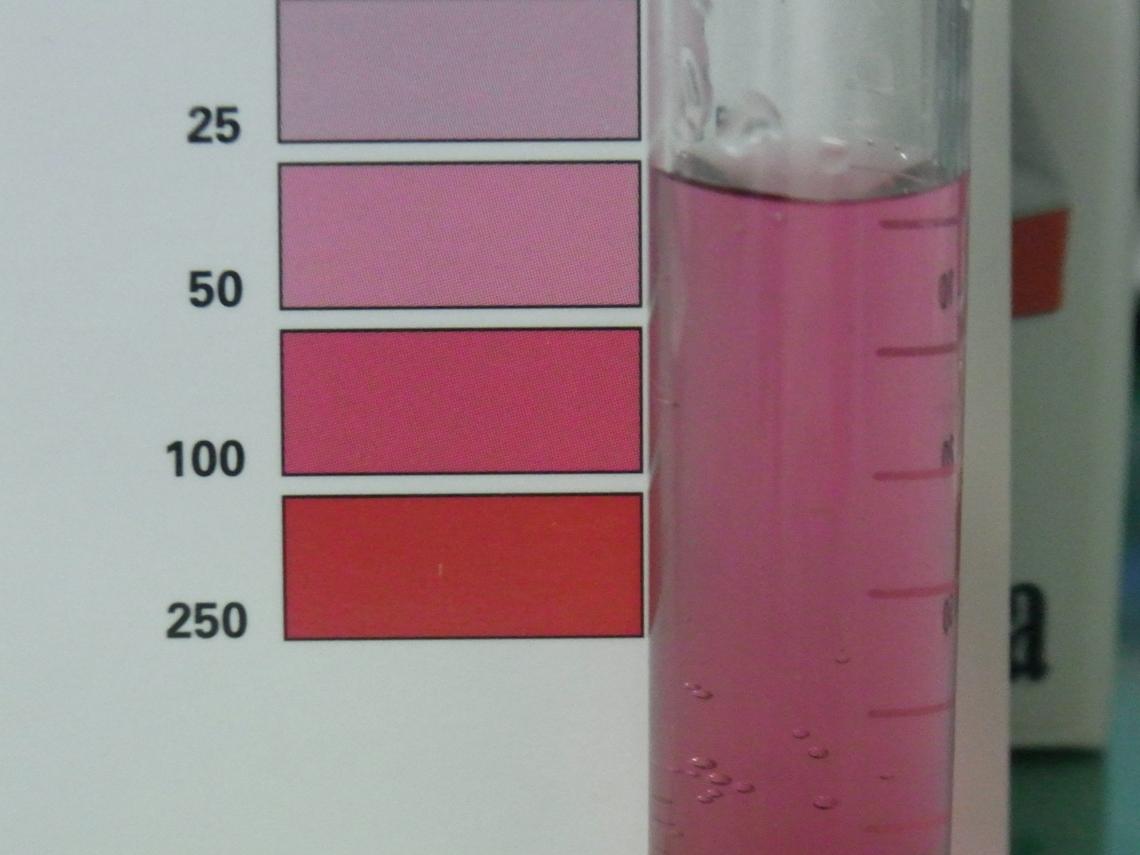硝酸塩20120704
