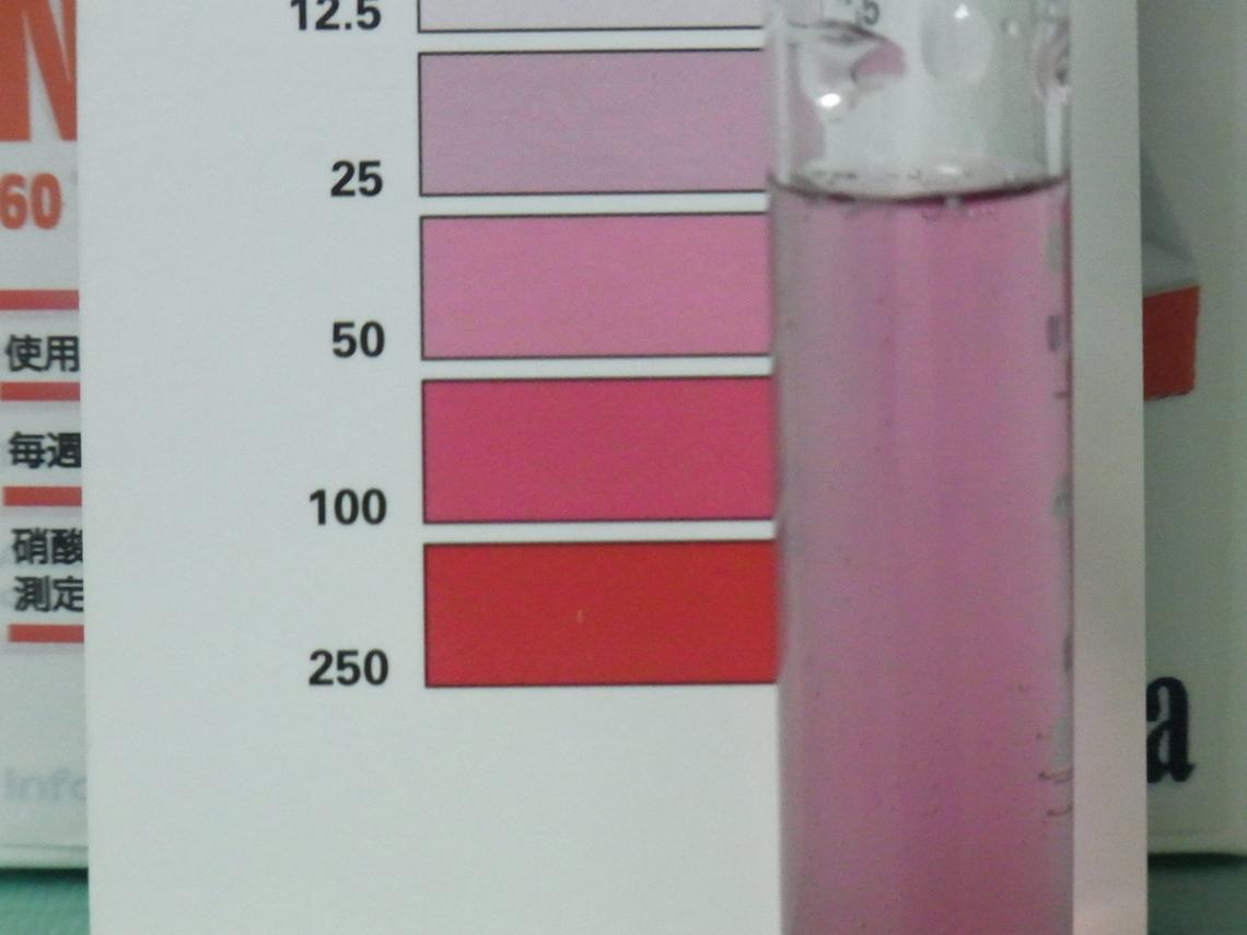 硝酸塩20120824