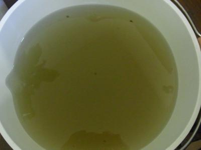 ゲルマット汚水20130107