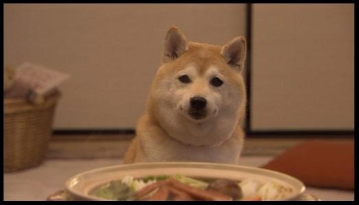 鍋でも食べなさい