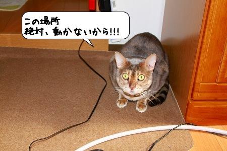 20100224_223819.jpg