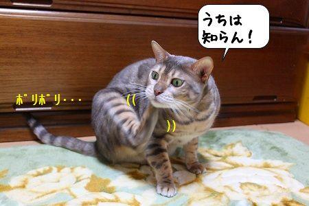 20100327_150241.jpg