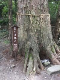 2010夏 大山旅行 158