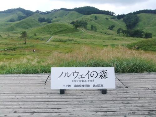9月4日砥峰高原 022