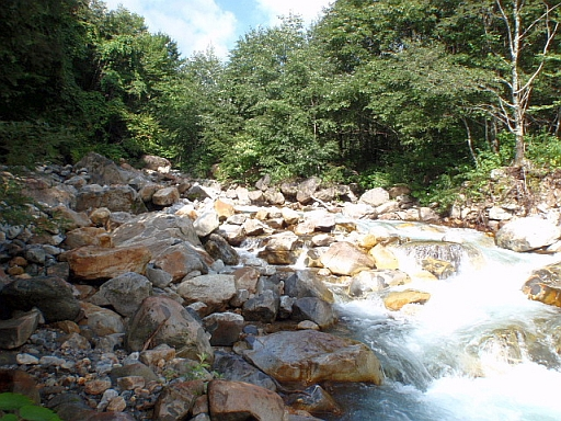 籠川上流.JPG