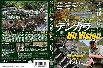 hit_vision.jpg